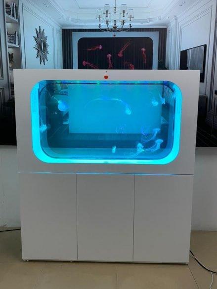 ff aquarium 2