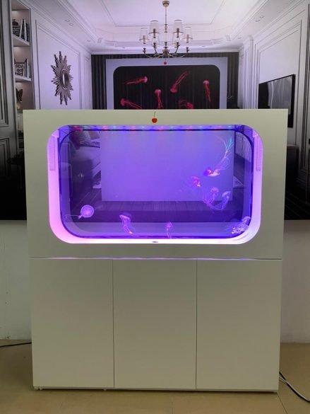 ff aquarium 3