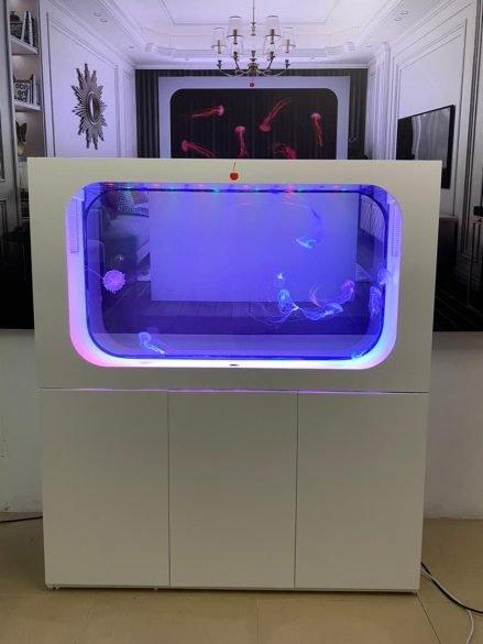 ff aquarium 6