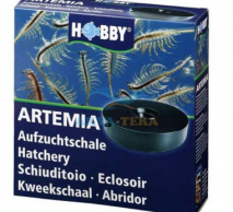 Artemia Zucht Set plus 100 g Artemia Eier